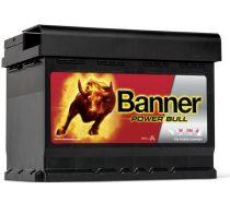 banner-power-bull-p6009_
